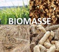Stufe a biomassa non solo pellet